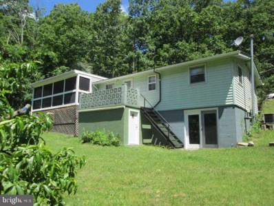 118 Shortys Place, Luray, VA 22835 - #: VAPA100010
