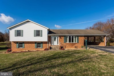 5 Meadow Lane, Luray, VA 22835 - #: VAPA101608