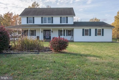 372 Kite Hollow Road, Stanley, VA 22851 - #: VAPA104332