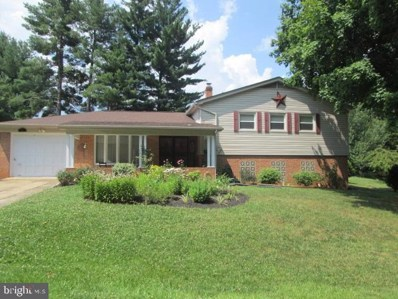 20 Court Lane, Luray, VA 22835 - #: VAPA104562