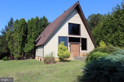 146 Woodland Court, Luray, VA 22835 - #: VAPA104726