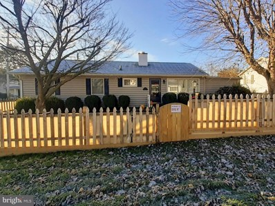 101 Willow Street, Luray, VA 22835 - #: VAPA104904