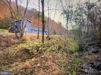 1167 Cubbage Hollow Road, Stanley, VA 22851 - #: VAPA105858
