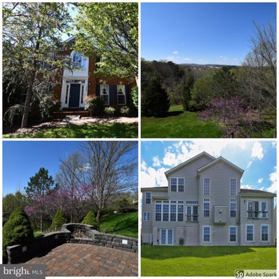 6433 Ashby Grove Loop, Haymarket, VA 20169 - MLS#: VAPW492726