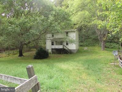 651 Gid Brown Hollow Road, Washington, VA 22747 - #: VARP106946