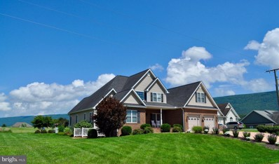 775 Clicks Lane, New Market, VA 22844 - #: VASH113188