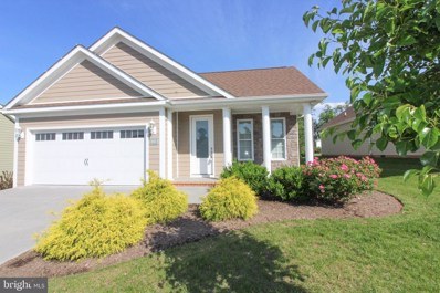 1023 Sun Poppy Court, Woodstock, VA 22664 - #: VASH114362