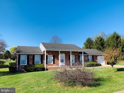 407 N Summit Avenue, Woodstock, VA 22664 - #: VASH117730