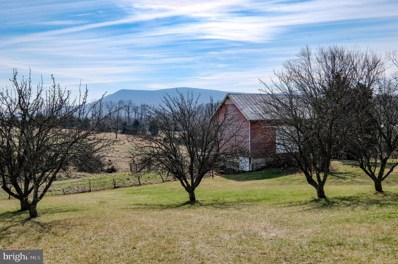 485 Red Bud Road, Strasburg, VA 22657 - #: VASH118400