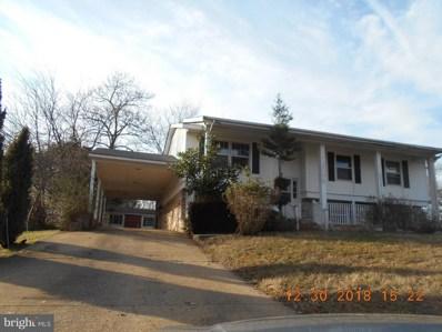 12002 Branchwater Street, Fredericksburg, VA 22407 - #: VASP165166