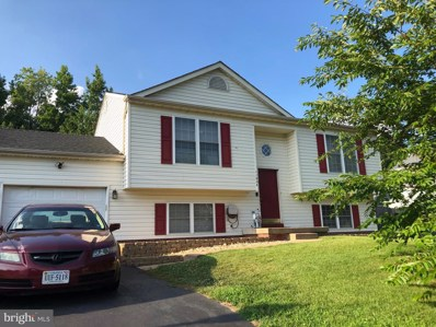 11606 Woodland View Drive, Fredericksburg, VA 22407 - #: VASP214250