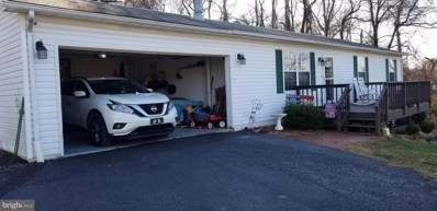 400 Northern Spy Drive, Linden, VA 22642 - #: VAWR100004