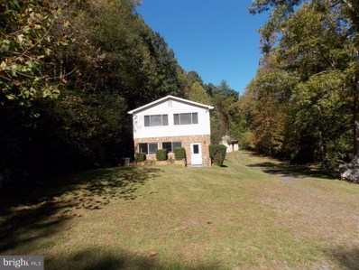 940 Dismal Hollow Road, Front Royal, VA 22630 - #: VAWR100146