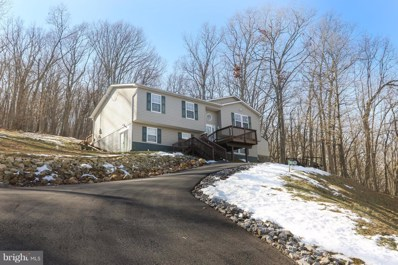 502 Thompson Mill Road, Front Royal, VA 22630 - #: VAWR118202