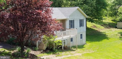411 Wealthy Road, Linden, VA 22642 - #: VAWR136674