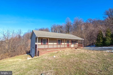 318 Cliffside Road, Linden, VA 22642 - #: VAWR139158