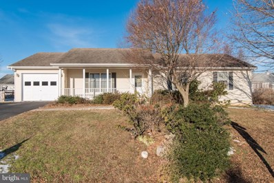 124 Orchid Lane, Falling Waters, WV 25419 - #: WVBE160024