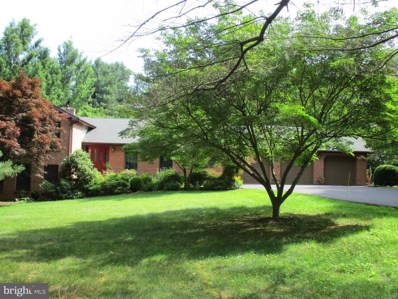 253 Tufts, Falling Waters, WV 25419 - #: WVBE169314