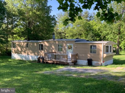 528 Emerson Drive, Falling Waters, WV 25419 - #: WVBE177422