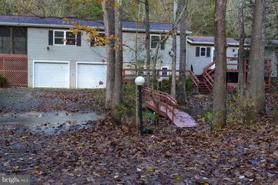 951 Mill Gap Road, Lost River, WV 26810 - #: WVHD100020