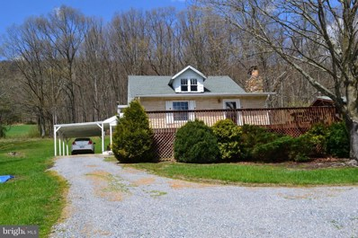 913 May Lane, Mathias, WV 26812 - #: WVHD104534