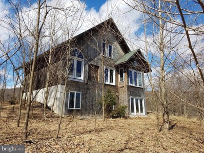 203 Shawnee Hill Drive, Old Fields, WV 26845 - #: WVHD104682