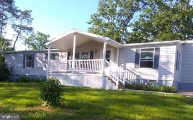 113 Shirkey Lane, Mathias, WV 26812 - #: WVHD105220