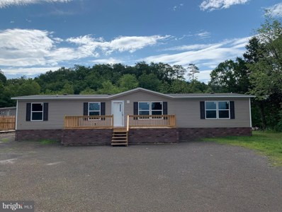 1163 South Fork Road, Moorefield, WV 26836 - #: WVHD105336