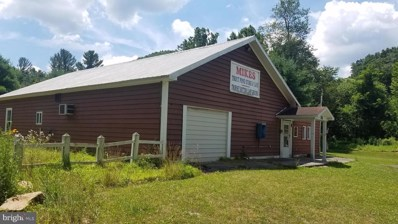 5584 Thorn Bottom Road, Lost City, WV 26810 - #: WVHD105506