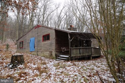 674 Meadow View, Lost River, WV 26810 - #: WVHD105674
