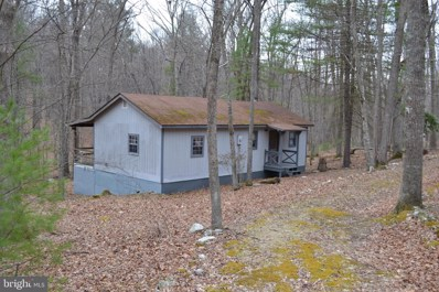 700 Trout Stream Road, Lost River, WV 26810 - #: WVHD105818