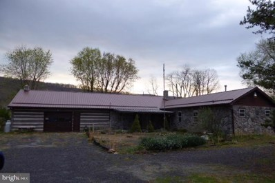 57 Willow Tree Drive, Rig, WV 26836 - #: WVHD105884
