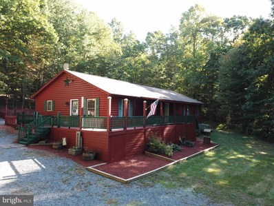 105 Evergreen Farms Lane, Wardensville, WV 26851 - #: WVHD106374