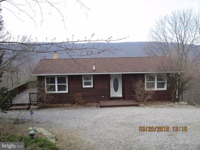 20 Sparrow Hill Road, Paw Paw, WV 25434 - #: WVHS111614