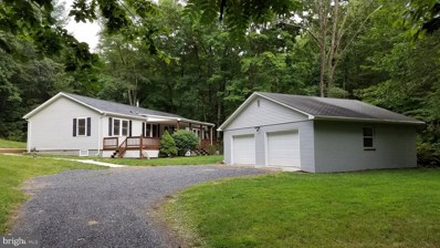 1981 Buffalo Hollow Road, Romney, WV 26757 - #: WVHS112848