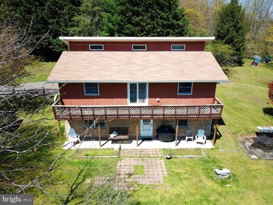 214 Serenity Drive, Romney, WV 26757 - #: WVHS114022