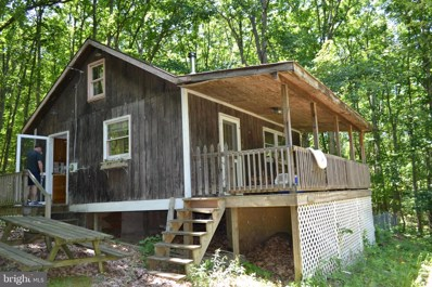 105 Bear Road, Delray, WV 26714 - #: WVHS114078