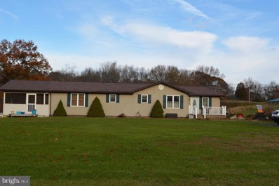 1866 Baker Hollow Road, Ridgeley, WV 26753 - #: WVMI100030