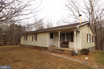 67 Waterside Court, Berkeley Springs, WV 25411 - #: WVMO101106
