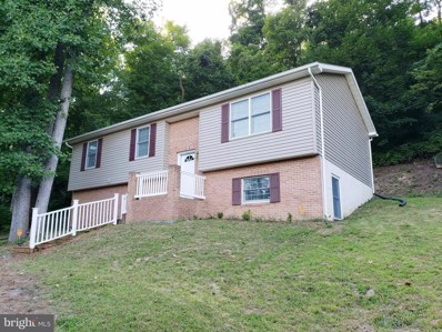 452 Southridge Drive, Berkeley Springs, WV 25411 - #: WVMO115484