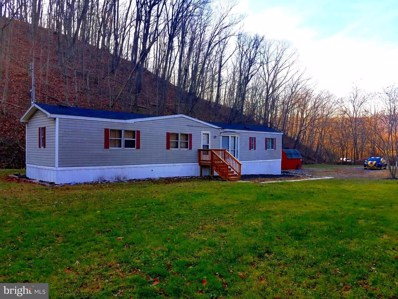 718 Sand Mine Road, Berkeley Springs, WV 25411 - #: WVMO116334