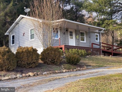 58 George Lane, Berkeley Springs, WV 25411 - #: WVMO116352