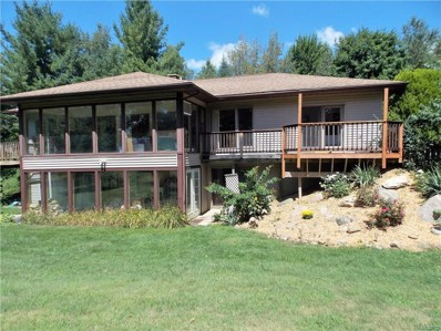 10221 Washburn Rd, Columbiaville, MI 48421 - MLS#: 21491597