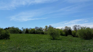 7205 Hickory, Onsted, MI 49265 - MLS#: 31314608