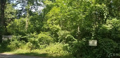 5000 Rays Dr, Onsted, MI 49265 - MLS#: 31354255