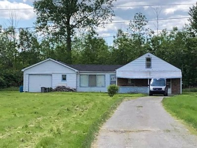 1401 Belle River Rd, East China, MI 48054 - MLS#: 31382172