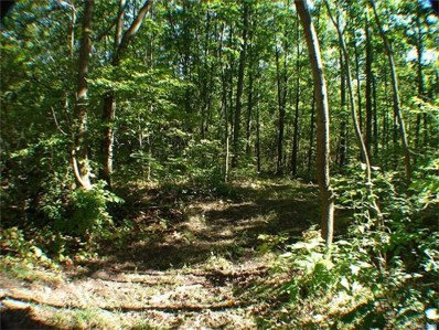 Ranch Road, Rose Twp, MI 48442 - MLS#: 216093209
