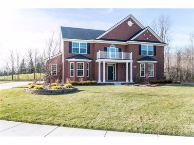 47020 Hidden Creek Court, Canton Twp, MI 48187 - MLS#: 217057015