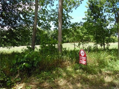 Thomas Road, Metamora Twp, MI 48455 - MLS#: 217071496