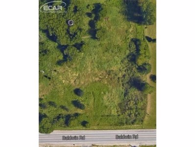 Baldwin Road, Mundy Twp, MI 48430 - MLS#: 217075018